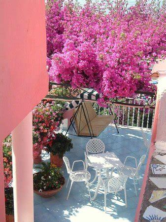 hotel casa rosa isola dischia italy hotel reviews