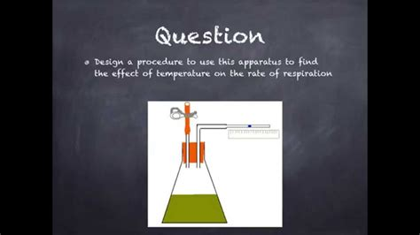 design an experiment to determine if plants respire igcse 2 8 designing an experiment for rate of