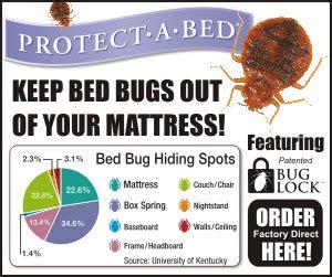 Americana Pelindung Kasur Tahan Air protect a bed mattress protector setiap kasur butuh