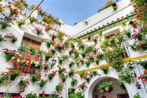 fiori per terrazzi fiori per balconi fiorista fiori per balconi fiori