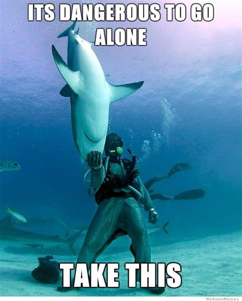 Funny Shark Meme - 20 funniest shark week memes gifs and comics weknowmemes