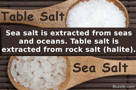 salt rock l rock salt vs sea salt