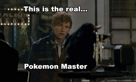 Fantastic Meme - review fantastic beasts where to find them 2016
