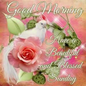 Good morning have a beautiful and blessed sunday pictures photos and