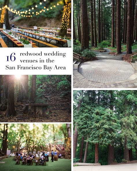 wedding venues in san francisco bay area 16 amazing wedding venues with redwoods in the san