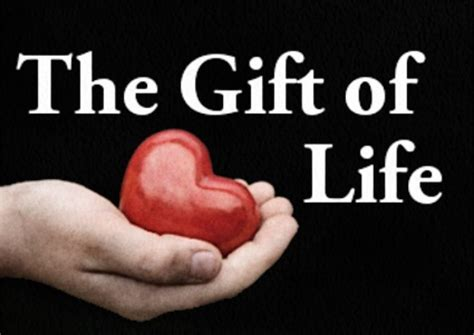 life with emily a life style blog gifts under 50 the gift day 29 my2ndheartbeat