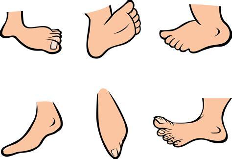 foot clip big toe png transparent big toe png images pluspng
