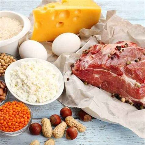 proteine alimentazione alimentazione valori nutrizionali essenziali e funzioni