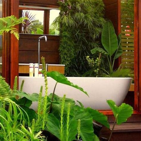 indoor plants bathroom 30 green ideas for modern bathroom decorating with plants