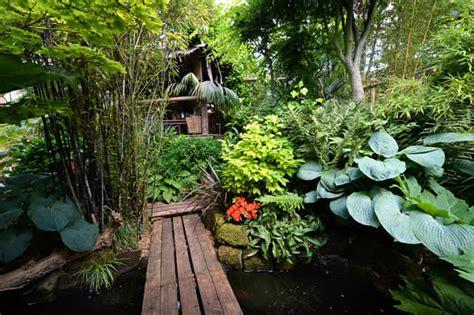cold hardy tropical plants  create  tropical garden
