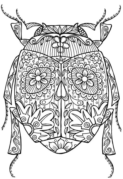 coloring pages adults pinterest 10 best images about coloring pages on pinterest