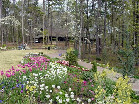 Welcome Spring At Arkansas Garvan Woodland Gardens Botanical Gardens Arkansas