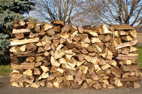 Firewood Fireplace by Wood Family Tree Service