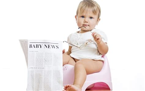 what is the best way to potty a puppy ask the expert what s the best way to potty a child the news