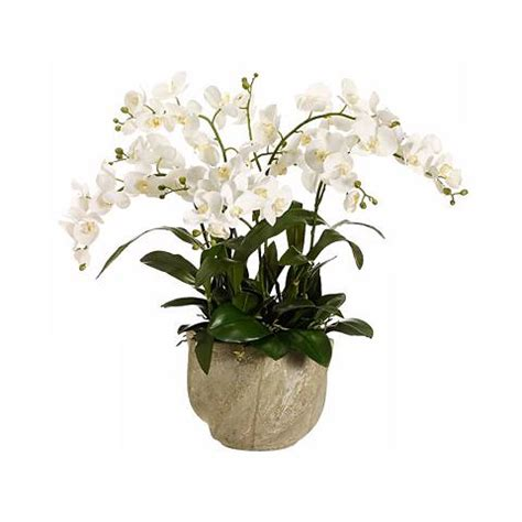 Grand Phalaenopsis Orchid Artificial Flower Arrangement Artificial Flower Arrangements Designer Faux Flowers