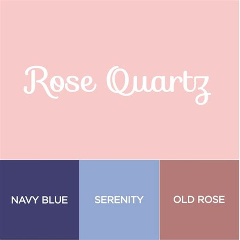 serenity color best 25 pink color schemes ideas on
