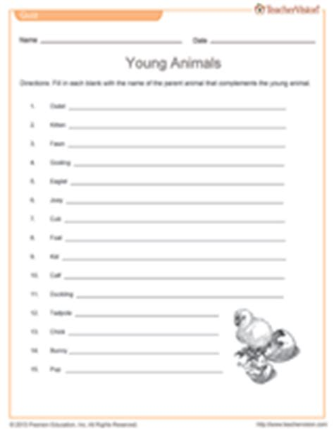 printable baby animal quiz young animals quiz science printable grades 2 5