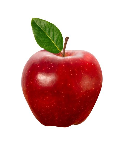 apple red the meaning and symbolism of the word apple