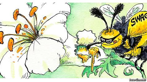 Mba In Entomology by Entomology Bad Beehaviour The Economist