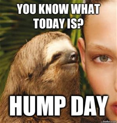 Hump Day Meme - hump day meme clean the random vibez