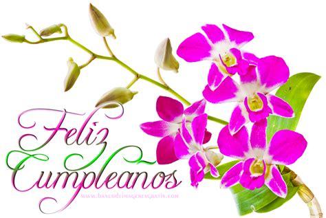 imagenes feliz cumpleaños amiga flores imagenes de cumplea 241 os de flores en hd gratis para