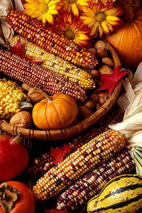 harvest colors 1000 ideas about harvest festivals on fall
