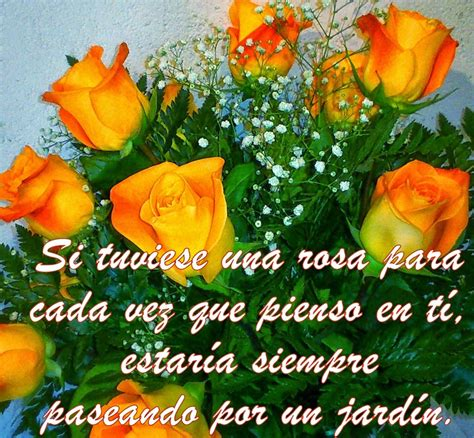 imagenes de hola con rosas imagenes de ramos de rosas con frases