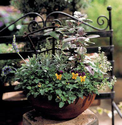 Herb Container Garden Ideas Pin By Gandy On Gardening Pinterest