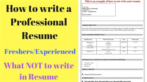 what not to write in a resume how to write a resume tips for freshers