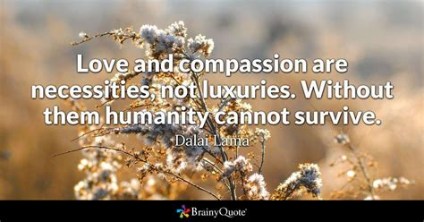 love  compassion  necessities  luxuries   humanity  survive dalai