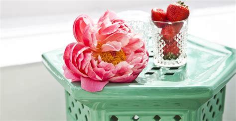 fiori da giardino primaverili fiori primaverili per un tocco di colore ed eleganza dalani