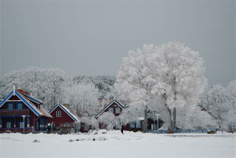 file nida in winter jpg