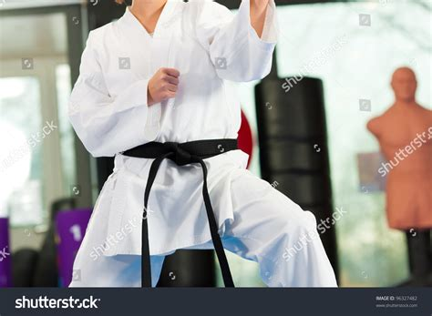 training women in the martial arts a special journey ebook woman martial art training gym she stock photo 96327482