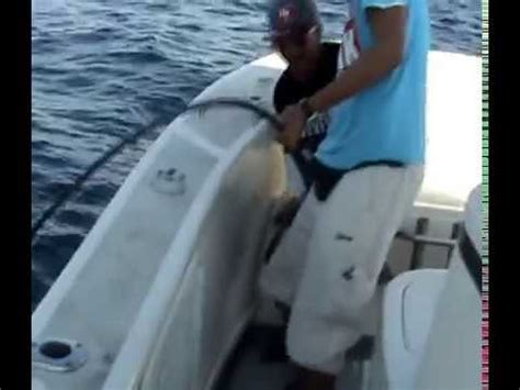 party boat deep sea fishing jacksonville fl offshore bottom fishing on the majesty party boat in ja
