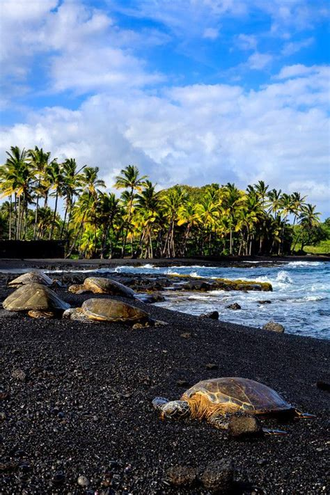 black sand beach the big island hi black sand sand beach and the big island on pinterest