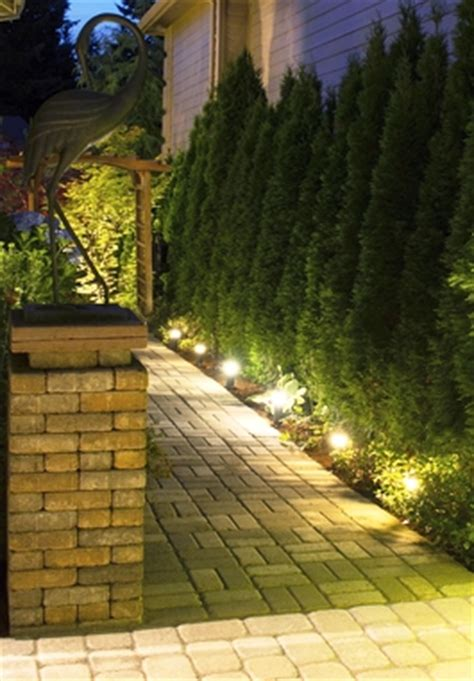 landscape lighting ideas walkways beautiful garden pathway