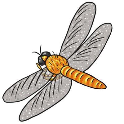 cute dragonfly clipart shweta tiwari
