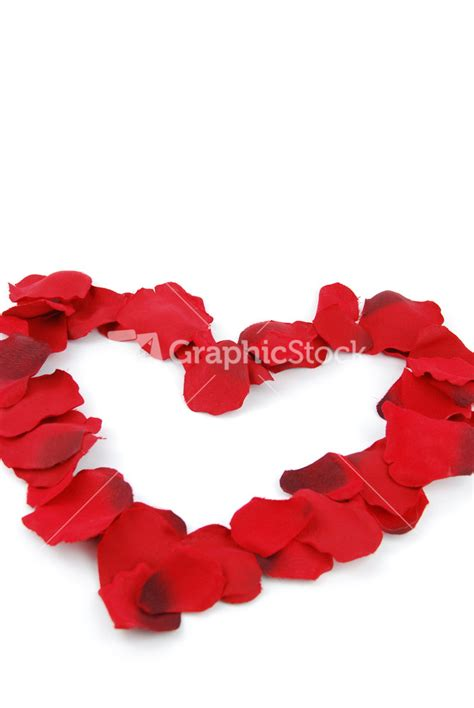 petals for valentines day made of petals for s day
