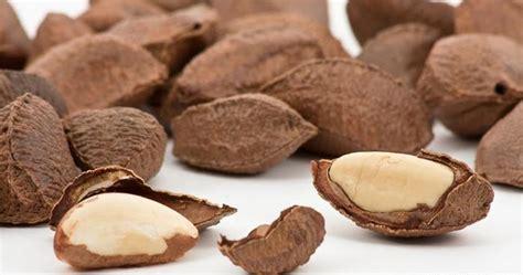 Kacang Kenari kacang kenari makanan yang baik untuk menurunkan kalori