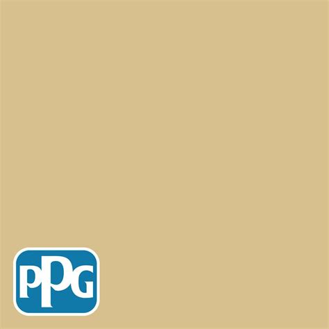 ppg timeless 3 gal tsc 37 driftwood beige solid color