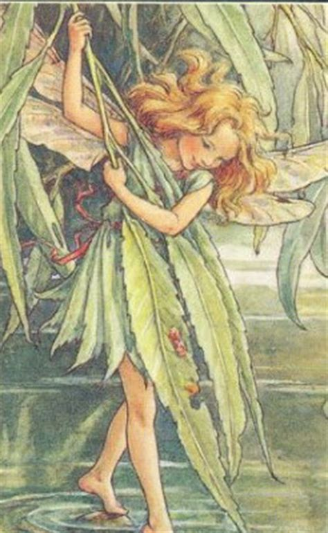 fairies a guide to the celtic fair folk books fairies and pixies guide the celtic faith
