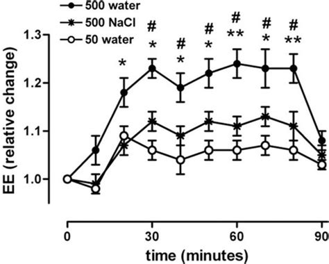 How Often A Day Do I Drink My Detox Smoothie by How Much Water Should You Drink Per Day