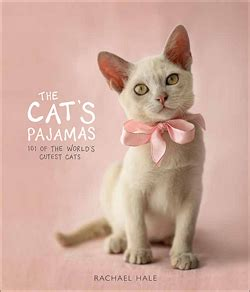 cat haiku sweet verses books dorothy reviews the cat s pajamas 101 of the