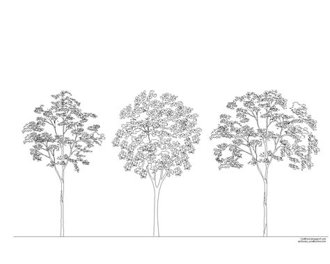 tree architecture drawing bloc arbre pour autocad dwg autocad trees and html