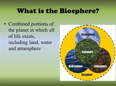 what is the review the biosphere ppt