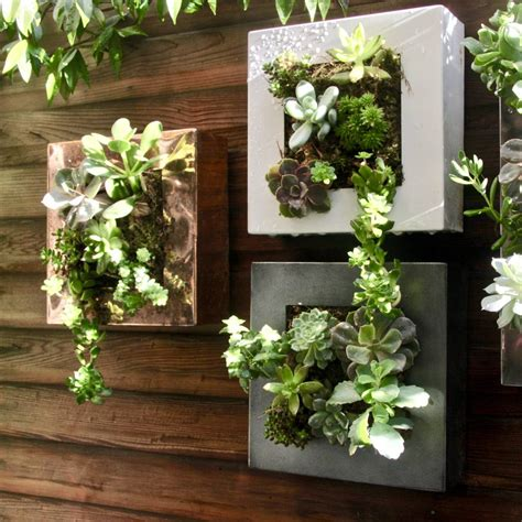 picture frame planter  london garden trading