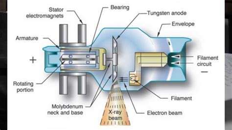 diagram of x x machine parts diagram nebulizer parts diagram