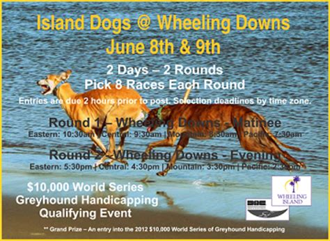 greyhoundnews greyhound racing today wednesday june