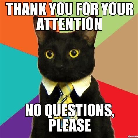 Business Cat Meme Generator - business cat weknowmemes generator