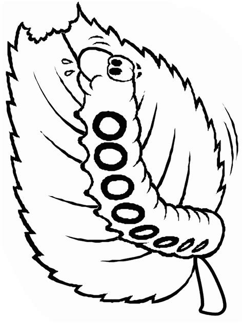 butterfly coloring pages hard butterfly coloring